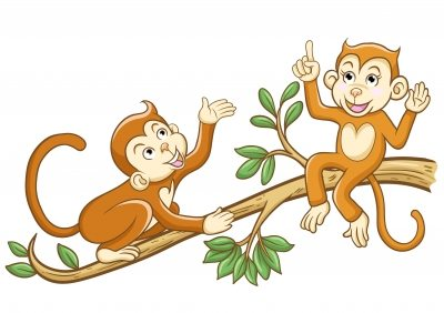 monkeys chattering